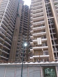 Gallery Cover Image of 1375 Sq.ft 3 BHK Apartment for rent in Alpine AIG Park Avenue, Noida Extension for 10500