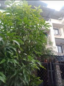 Building Image of 1700 Sq.ft 6 BHK Villa for buy in Nalasopara West for 8000000