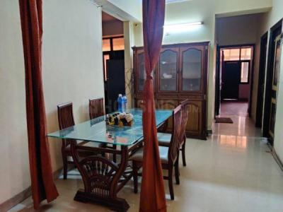 Gallery Cover Image of 1300 Sq.ft 2 BHK Apartment for rent in Amrapali Village Phase 2, Kala Patthar for 19000