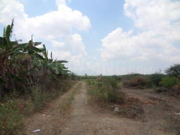Gallery Cover Image of  Sq.ft Residential Plot for buy in RS Puram for 66000000