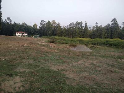 900 Sq.ft Residential Plot for Sale in Raipur, Dehradun