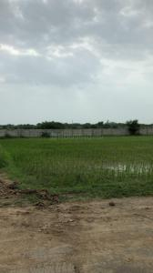 16200 Sq.ft Residential Plot for Sale in Bodakdev, Ahmedabad