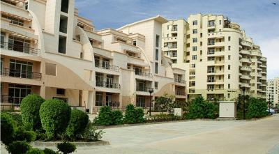 Gallery Cover Image of 825 Sq.ft 1 BHK Apartment for rent in Eldeco Utopia, Sector 93A for 21000