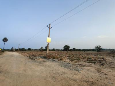 1620 Sq.ft Residential Plot for Sale in Rudraram, Hyderabad