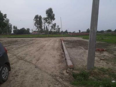 Gallery Cover Image of  Sq.ft Residential Plot for buy in Jagatpura for 8931000