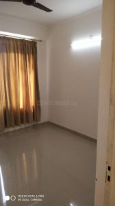 Gallery Cover Image of 580 Sq.ft 1 BHK Apartment for rent in Pigeon Spring Meadows, Noida Extension for 7000