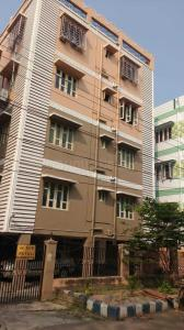 Gallery Cover Image of 1000 Sq.ft 2 BHK Apartment for rent in Baishnabghata Patuli Township for 14000