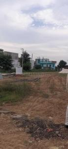 Gallery Cover Image of  Sq.ft Residential Plot for buy in Sector 97 for 425000