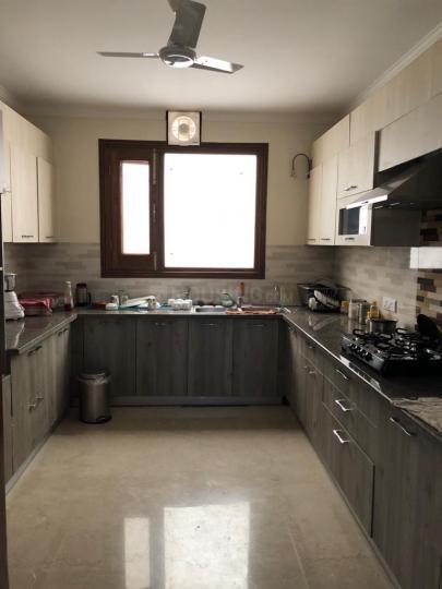 Kitchen Image of PG 4928886 Vasant Kunj in Vasant Kunj