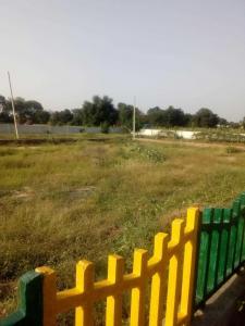 Gallery Cover Image of  Sq.ft Residential Plot for buy in Chaitanya Vihar for 445500