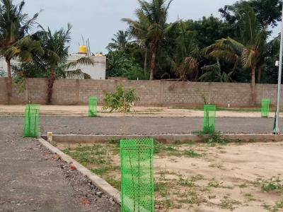 Gallery Cover Image of  Sq.ft Residential Plot for buy in Thirunindravur for 1092000