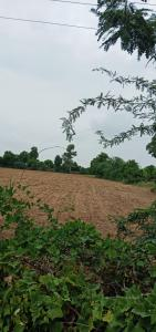 225 Sq.ft Residential Plot for Sale in Paldi, Ahmedabad
