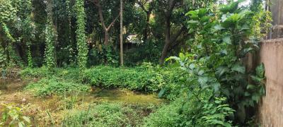 1440 Sq.ft Residential Plot for Sale in Barrackpore, Kolkata