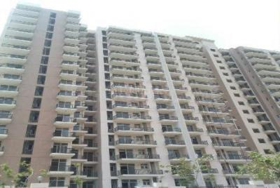 Gallery Cover Image of 1455 Sq.ft 3 BHK Apartment for rent in Skytech Matrott, Sector 76 for 16000