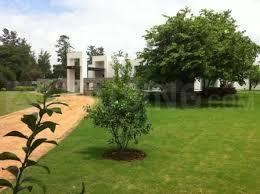 Gallery Cover Image of  Sq.ft Residential Plot for buy in DLF Farms for 227500000