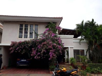 Gallery Cover Image of 4000 Sq.ft 4 BHK Villa for rent in Whitefield for 155000