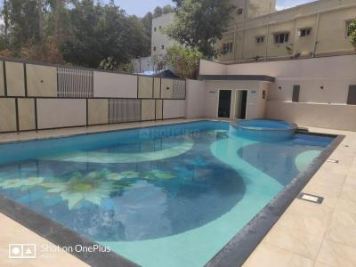 Gallery Cover Image of 1300 Sq.ft 2 BHK Apartment for rent in Brookefield for 28000