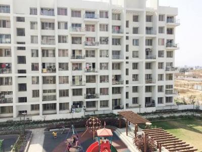 Gallery Cover Image of 1260 Sq.ft 3 BHK Apartment for rent in Pharande Celestial City, Ravet for 18000