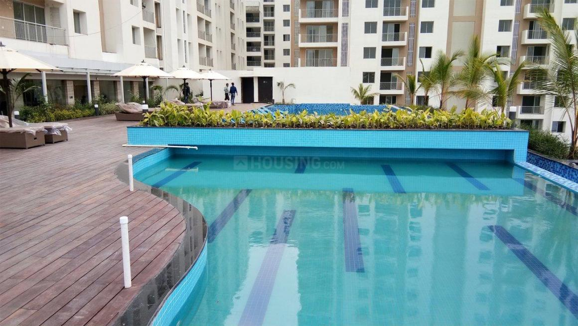 Swimming Pool Image of 1920 Sq.ft 3 BHK Apartment for rent in South Dum Dum for 30000