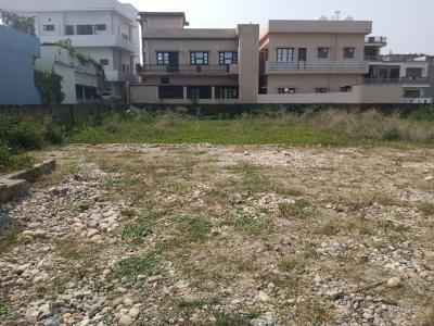 1200 Sq.ft Residential Plot for Sale in Baronwala, Dehradun