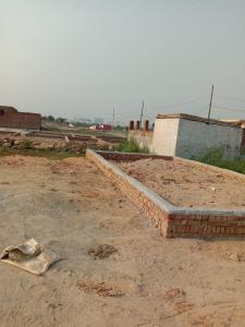 Gallery Cover Image of  Sq.ft Residential Plot for buy in Mayur Vihar Phase 1 for 960000