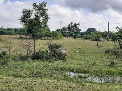1800 Sq.ft Residential Plot for Sale in Kanchipuram, Chennai