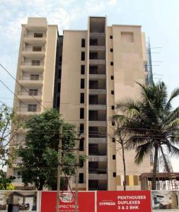 Gallery Cover Image of 2030 Sq.ft 3 BHK Apartment for rent in Marathahalli for 40000