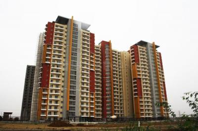 Gallery Cover Image of 1643 Sq.ft 3 BHK Apartment for rent in BPTP The Resort, Sector 75 for 13000