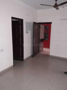 Gallery Cover Image of 1445 Sq.ft 3 BHK Apartment for rent in Noida Extension for 7000