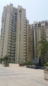 Gallery Cover Image of 500 Sq.ft 1 BHK Apartment for rent in Sector 168 for 14000