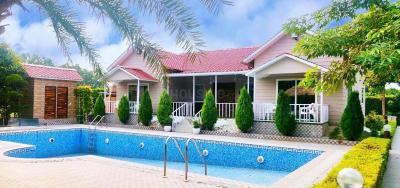 Gallery Cover Image of 900 Sq.ft 2 BHK Villa for buy in Sector 135 for 6500000