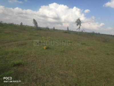 4356 Sq.ft Residential Plot for Sale in Sadlapalli, Hindupur