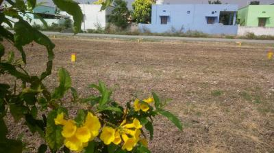 Gallery Cover Image of  Sq.ft Residential Plot for buy in Neelambur for 2930000