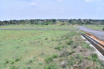 Gallery Cover Image of  Sq.ft Residential Plot for buy in Hosur for 1980000