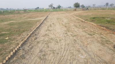Gallery Cover Image of  Sq.ft Residential Plot for buy in Chirag Dilli for 300000
