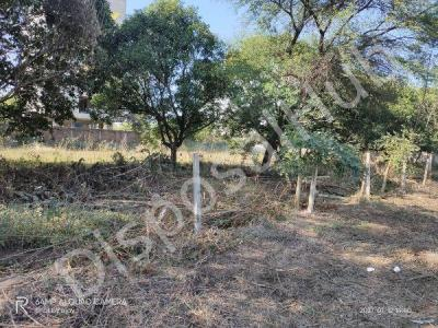 10890 Sq.ft Residential Plot for Sale in Gulmohar Colony, Bhopal