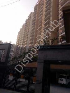 Gallery Cover Image of 1150 Sq.ft 3 BHK Apartment for buy in Oasis Realtech Venetia Heights, Surajpur for 3795000