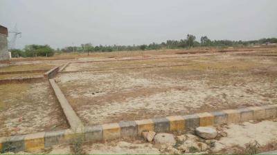 Gallery Cover Image of  Sq.ft Residential Plot for buy in Ghaila for 600000