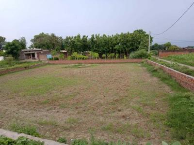 7700 Sq.ft Residential Plot for Sale in Rohania, Varanasi
