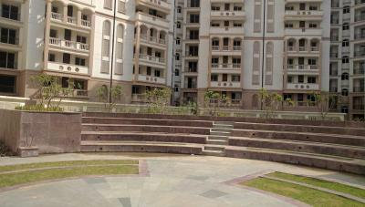 Gallery Cover Image of 455 Sq.ft 1 BHK Apartment for rent in Sector 11 for 13000