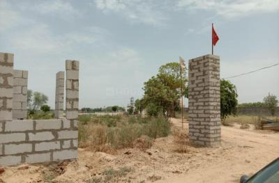 Gallery Cover Image of  Sq.ft Residential Plot for buy in Sector 91 for 2500000