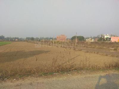 1000 Sq.ft Residential Plot for Sale in Suman Nagar, Haridwar