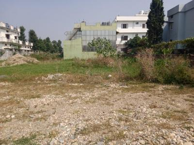 1593 Sq.ft Residential Plot for Sale in Baronwala, Dehradun