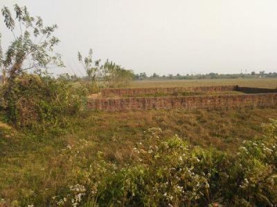 Gallery Cover Image of  Sq.ft Residential Plot for buy in Khandagiri for 900000
