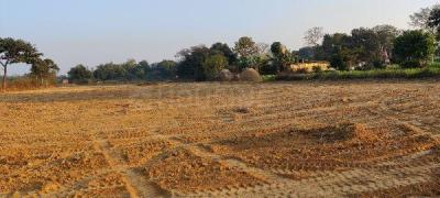2610 Sq.ft Residential Plot for Sale in Ormanjhi, Ranchi