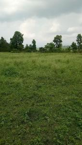 100 Sq.ft Residential Plot for Sale in Prem Nagar, Dehradun