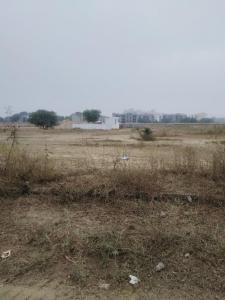 229 Sq.ft Residential Plot for Sale in Sector 77, Faridabad