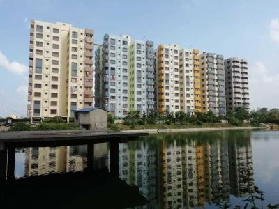 Gallery Cover Image of 925 Sq.ft 2 BHK Apartment for buy in Tapoban Housing, Arrah Kalinagar for 1526250