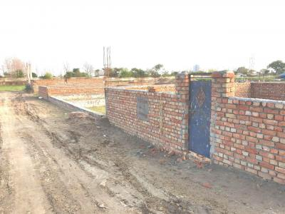 Gallery Cover Image of 900 Sq.ft Residential Plot for buy in Sector 137 for 1100000