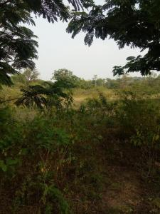 Gallery Cover Image of  Sq.ft Residential Plot for buy in Rajendra Nagar for 15000000